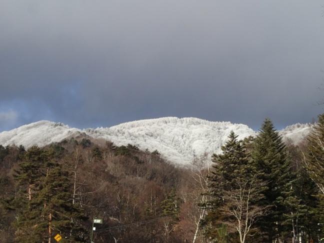 雪の八子ヶ峰1