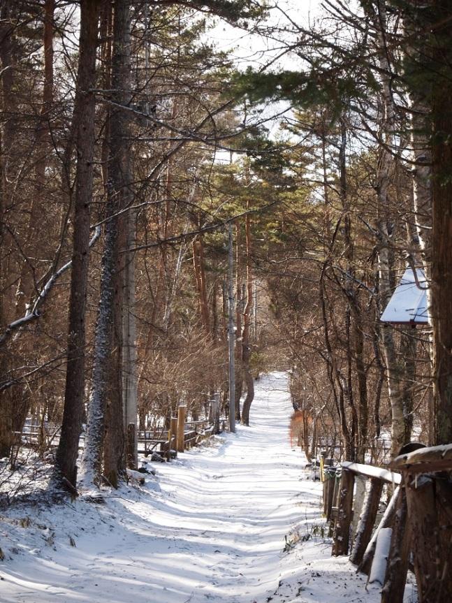 蓼科別荘地雪景色 2016年12月28日